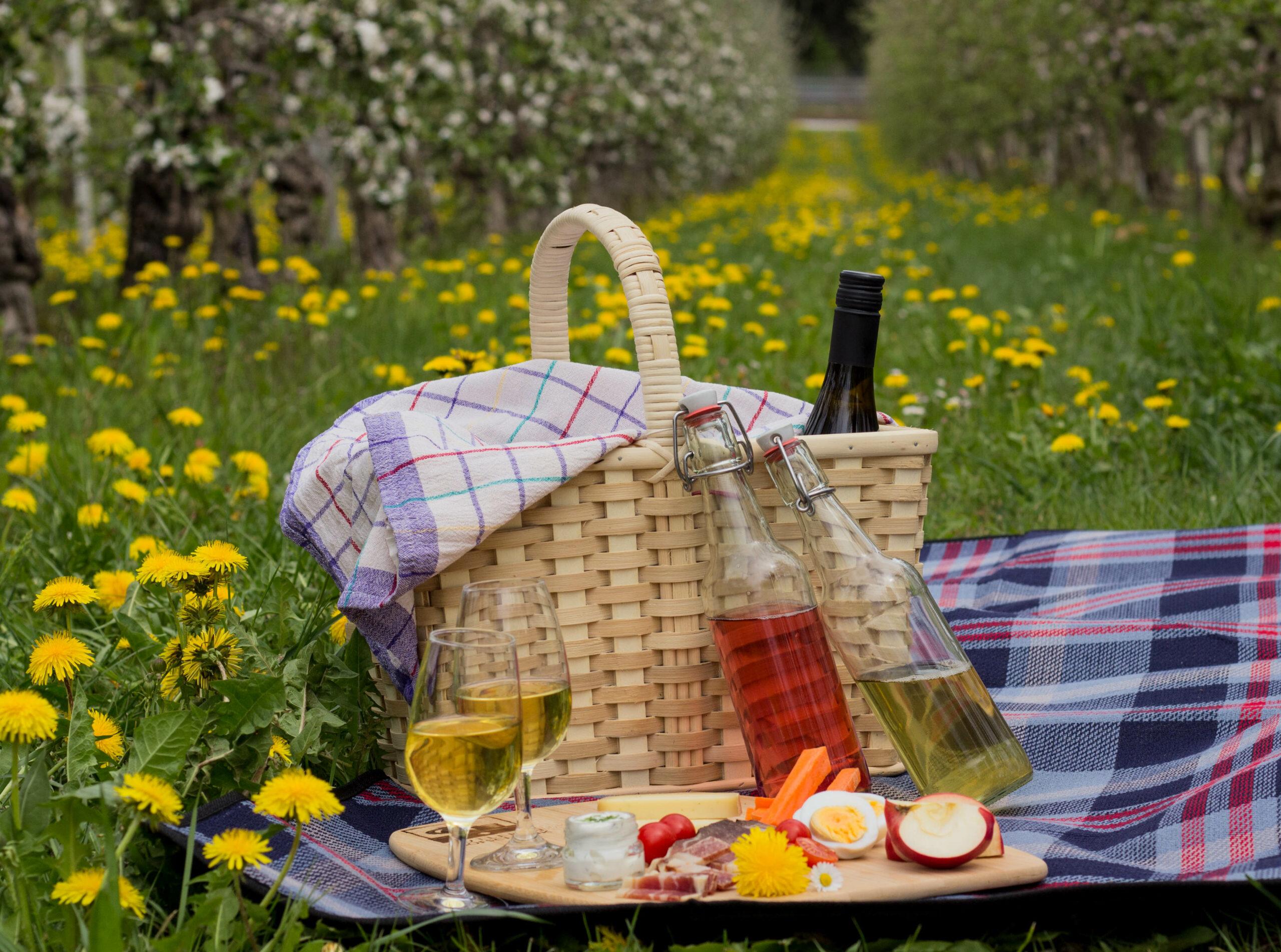 Picknick im Obst- und Weingarten
