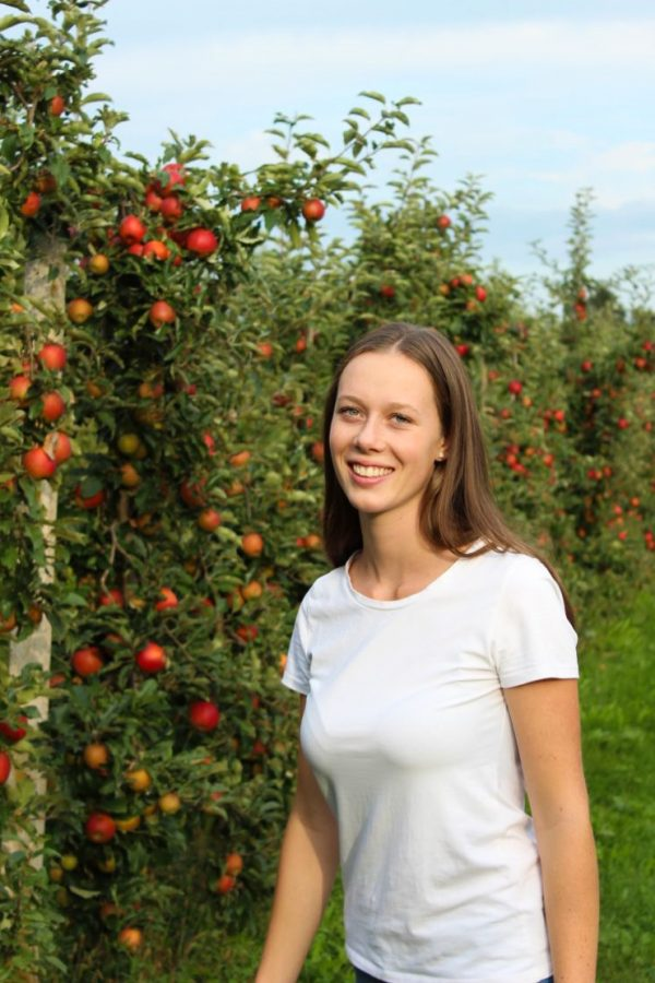 Martina Gutleben - Apfelbäume in Itzlranggen