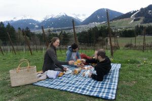 Picknick im Obstgarten